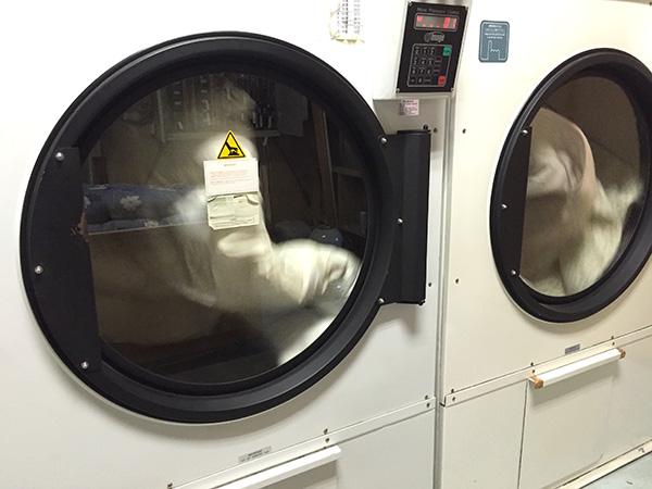 しももとクリーニング 完全個別洗い