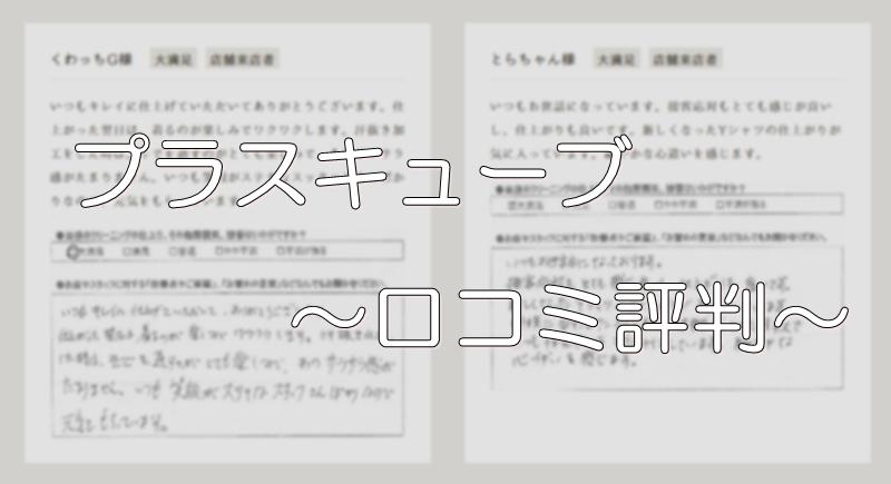 プラスキューブ 口コミ評判